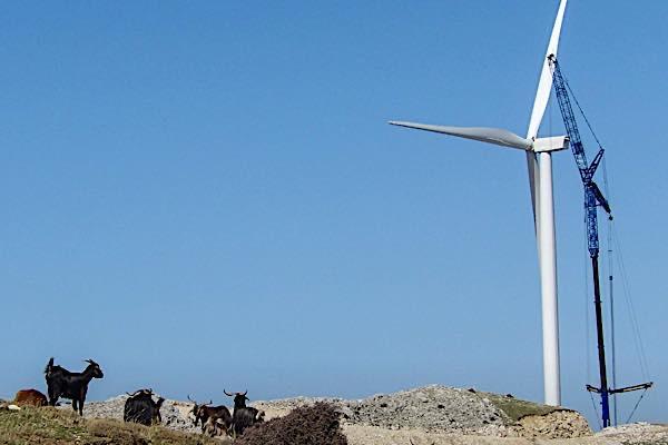 windpark2-1