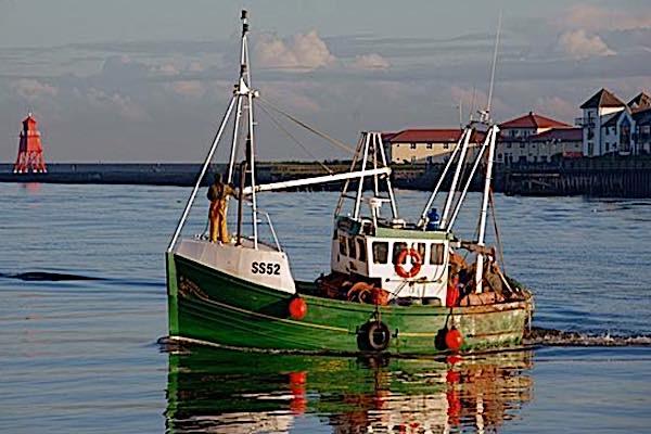 vesselship1